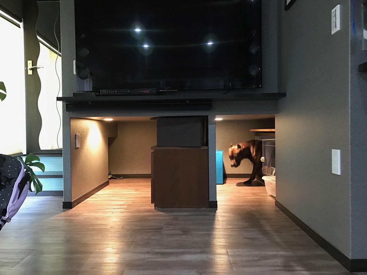テレビの下